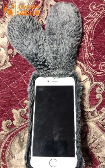 失物招领:iPhone6手机失物招领